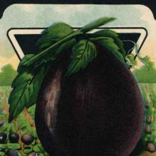 Eggplant Heroes